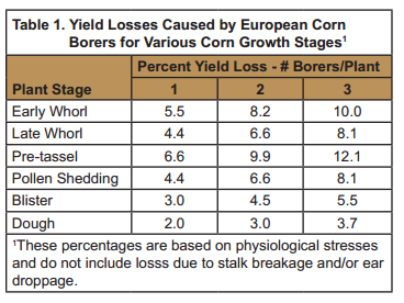 Becks_Yield_Losses_European_Corn_Borers.